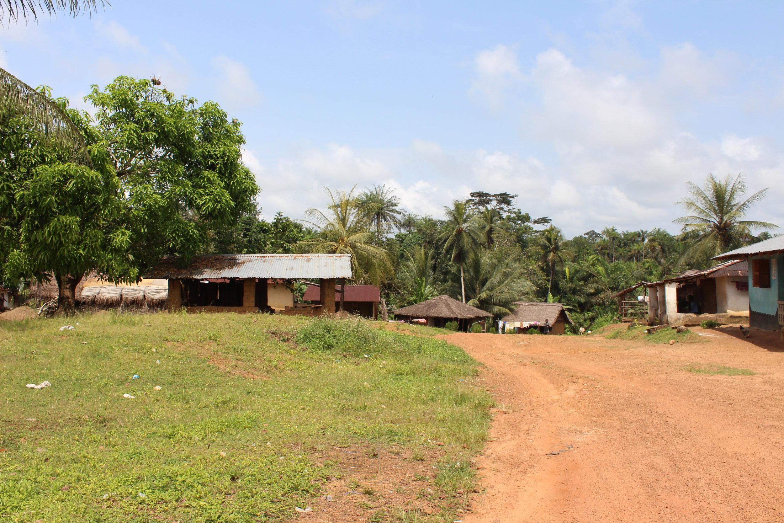 Jene Wonde village, near the Sierra Leone border.JPG