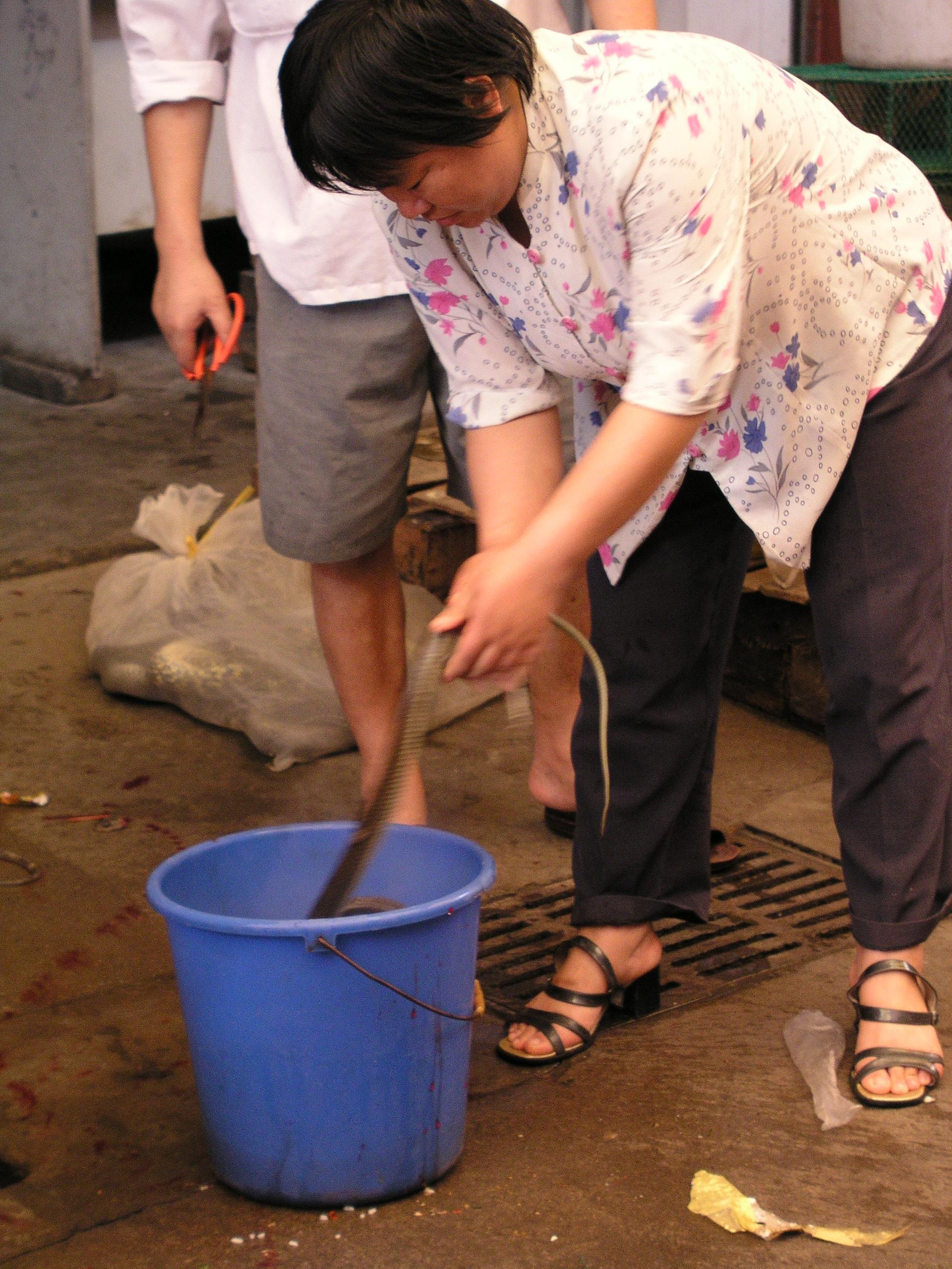 Chau Tau Market in Guangzhou where the SARS epidemic started from live civets .2.JPG
