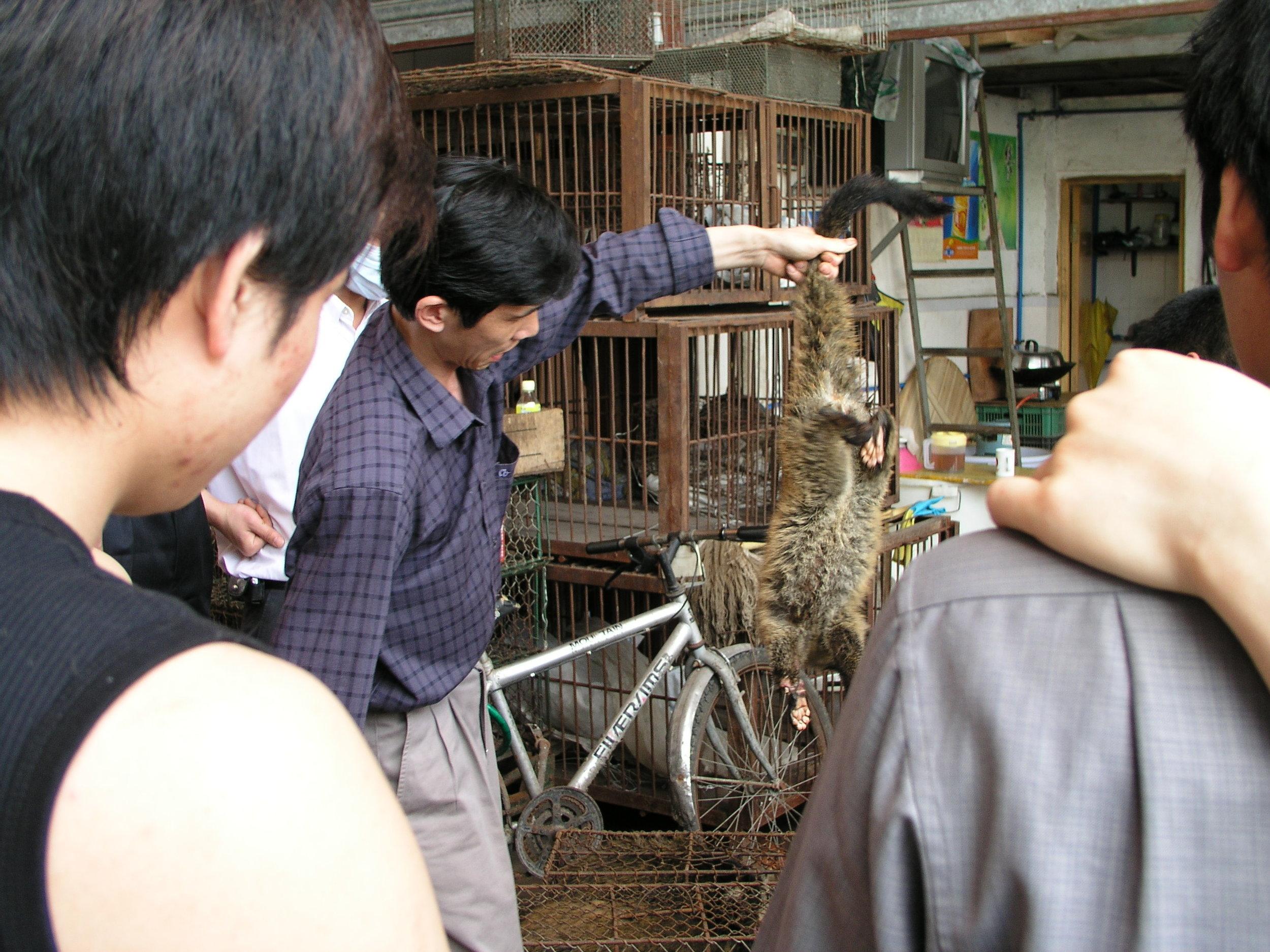Chau Tau Market in Guangzhou where the SARS epidemic started from live civets .5.JPG
