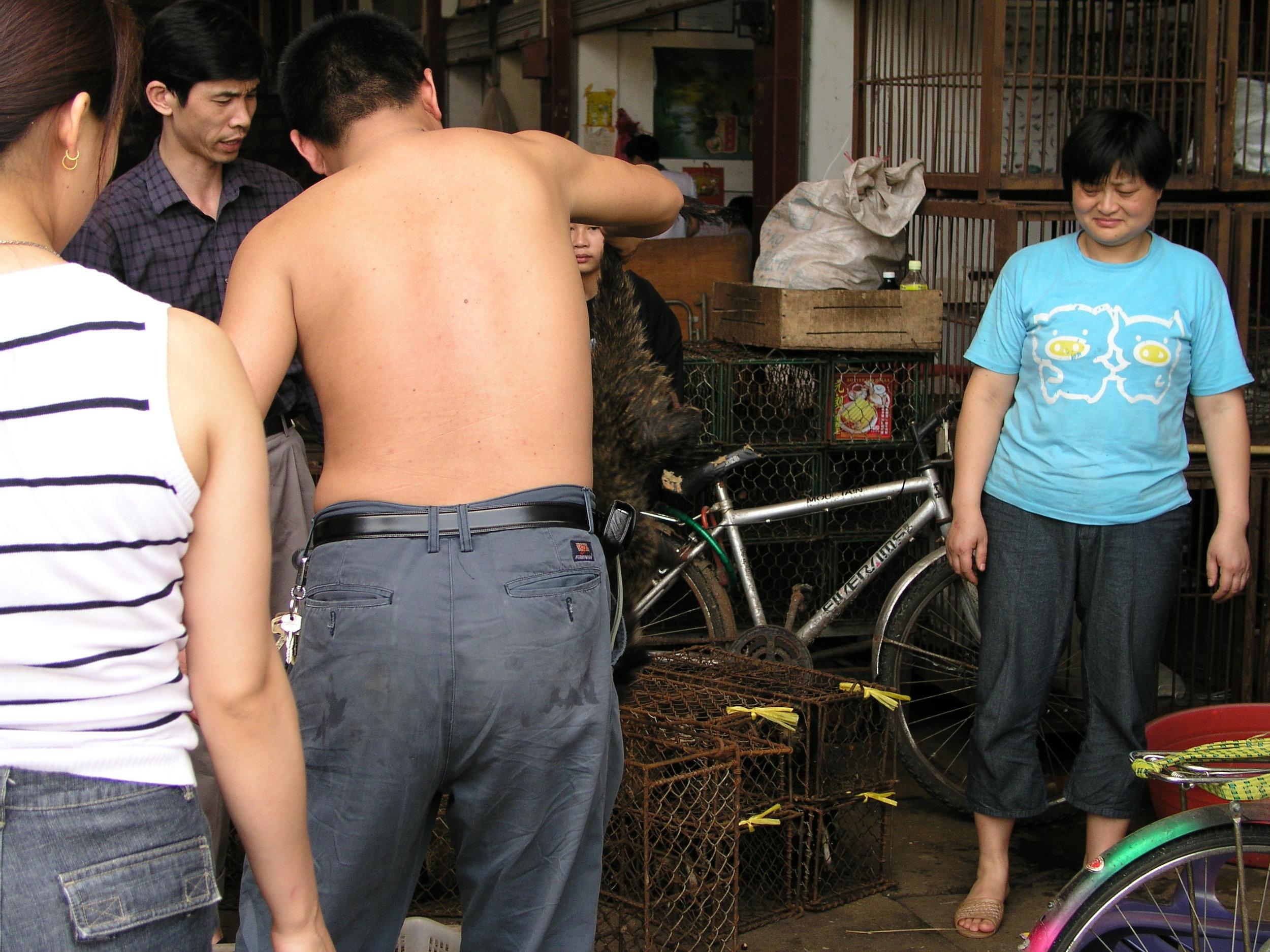 Chau Tau Market in Guangzhou where the SARS epidemic started from live civets .7.JPG