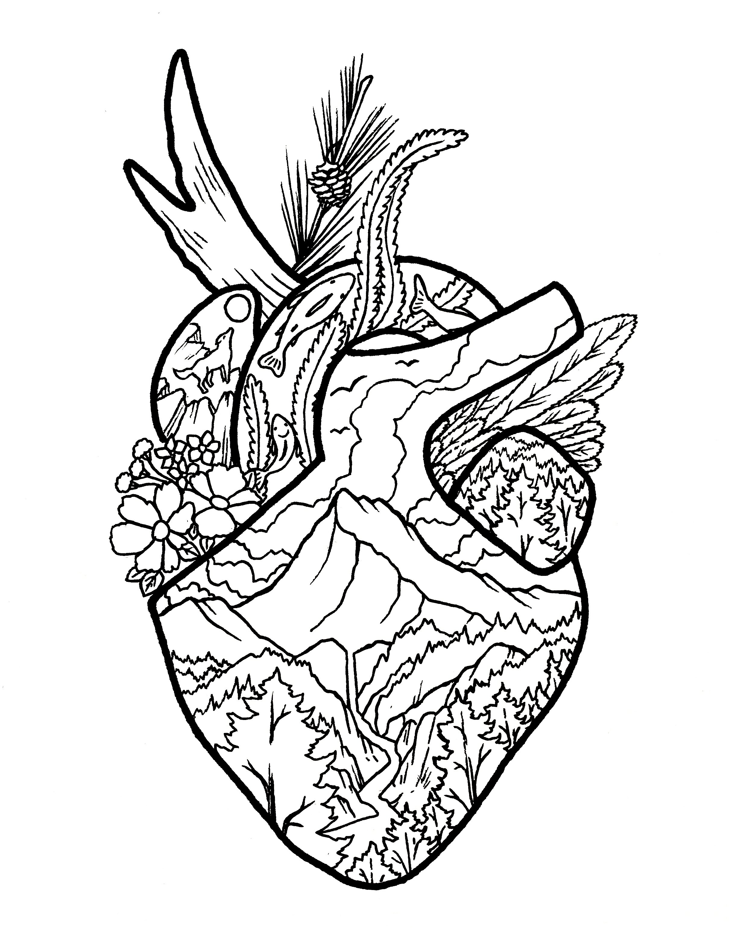 Advanced Coloring Pages Wild At Heart A Million Tiny Lines