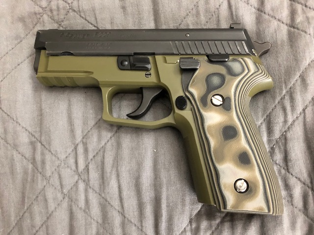 P229 stainless slide on a 229 railed frame.
