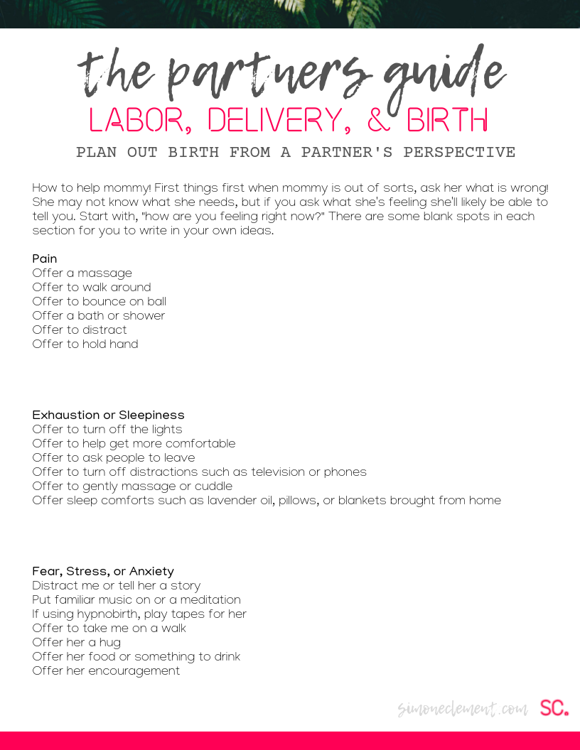 Partner's Labor & Delivery Plan.png