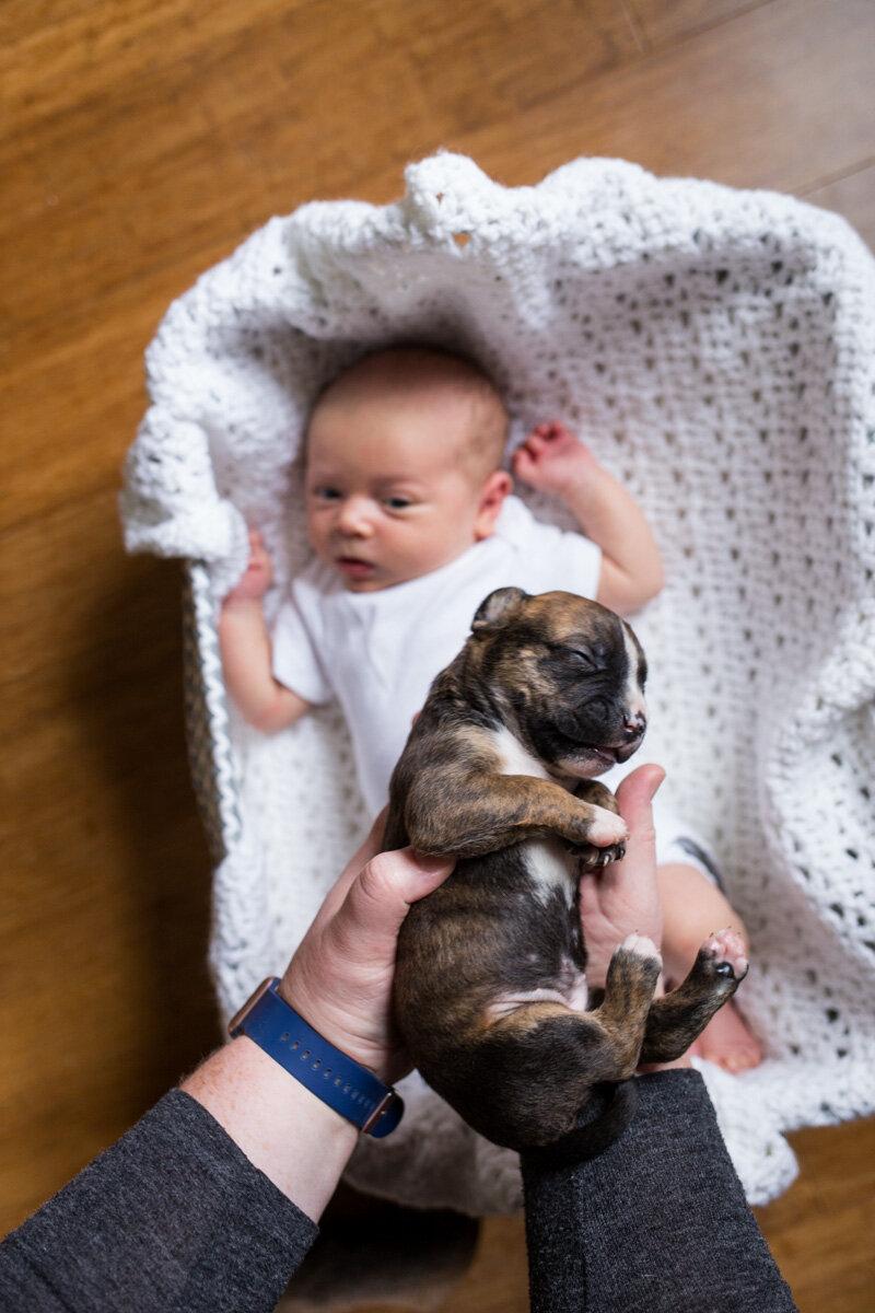 201909_Isaac&Puppies_3.jpg