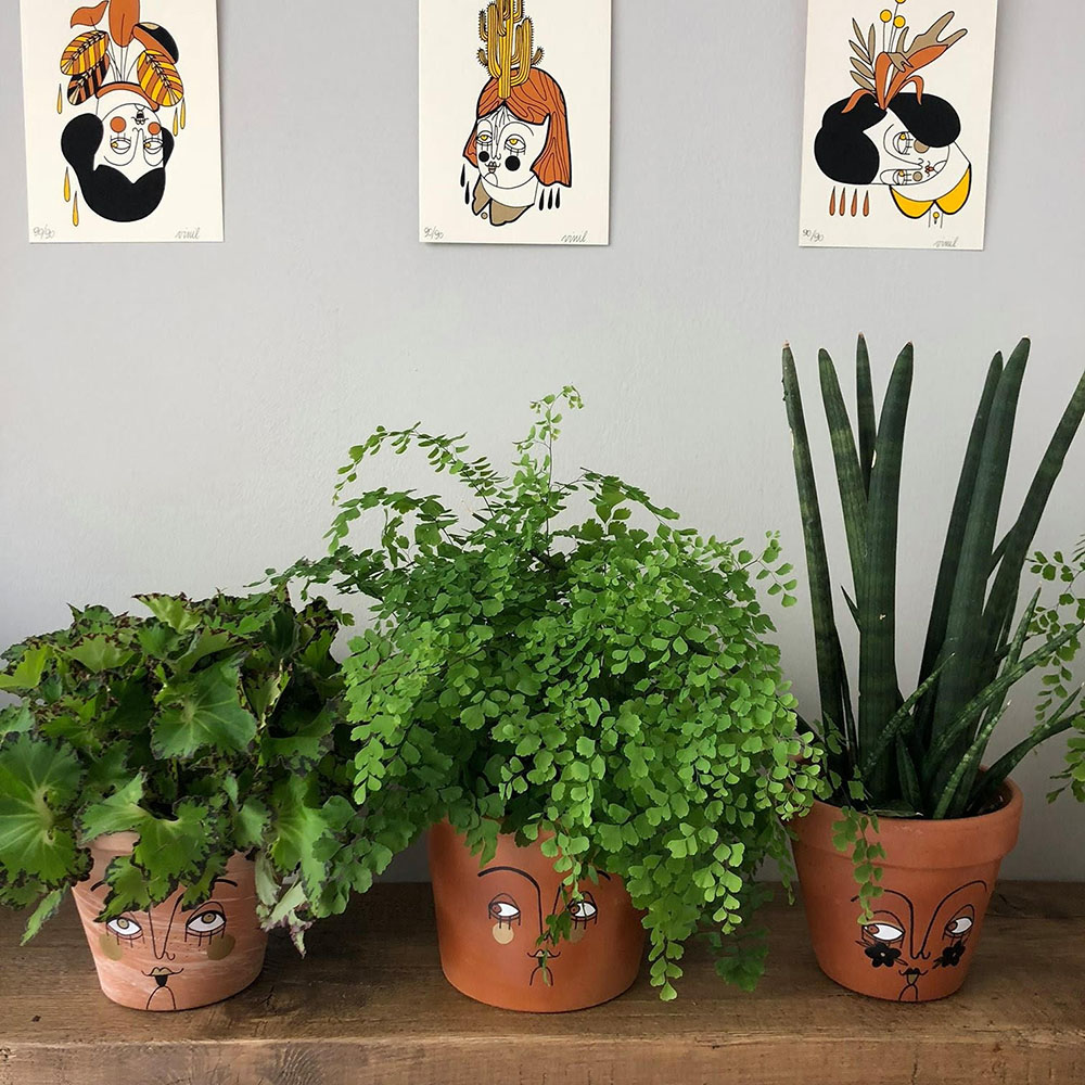vinil piante e vasi