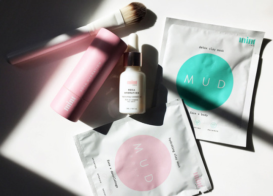 mint skincare face mask review