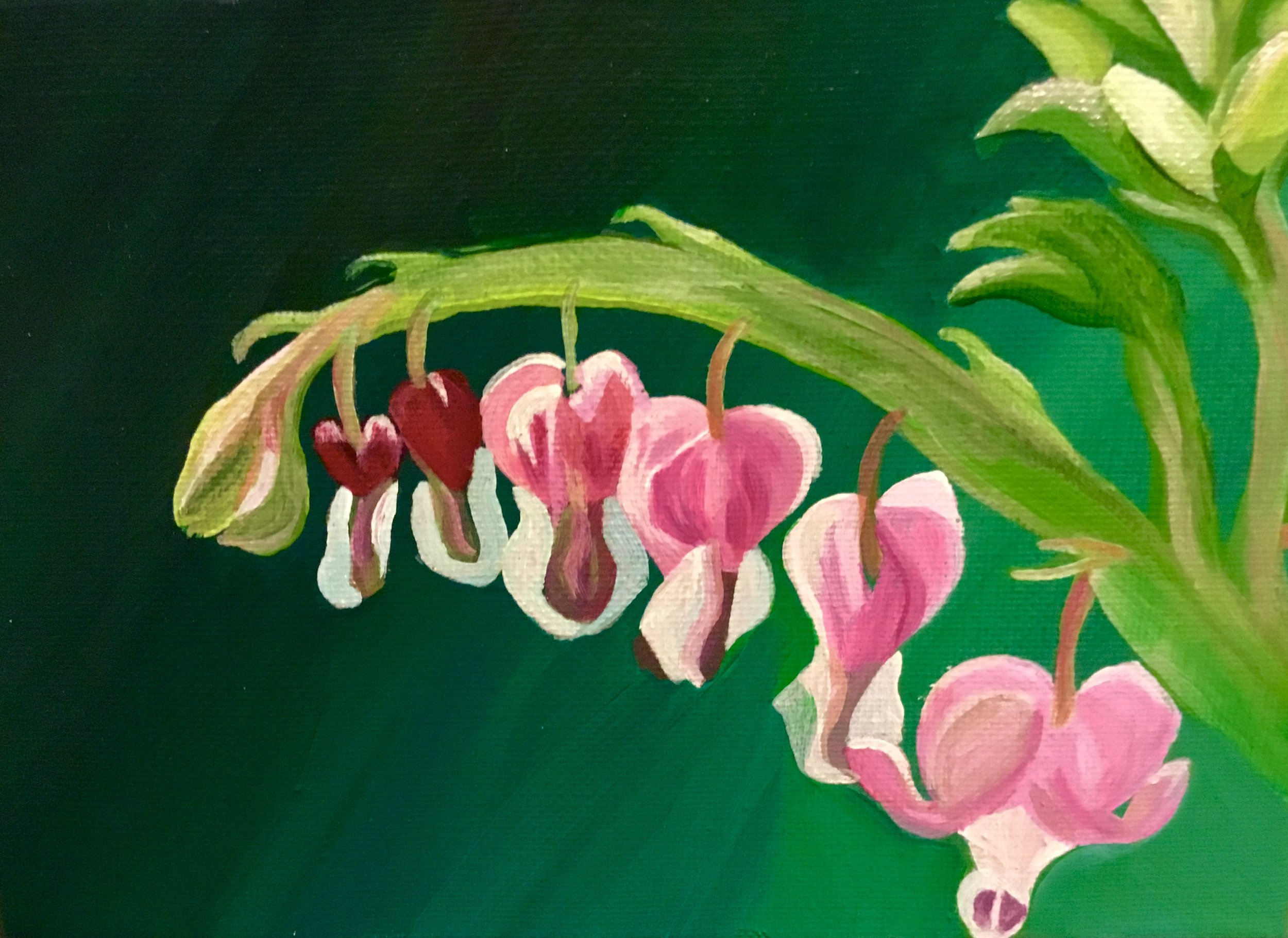 Jadebrace Art - Acrylic paintings on framed canvases, as well as watercolor and ink illustrations