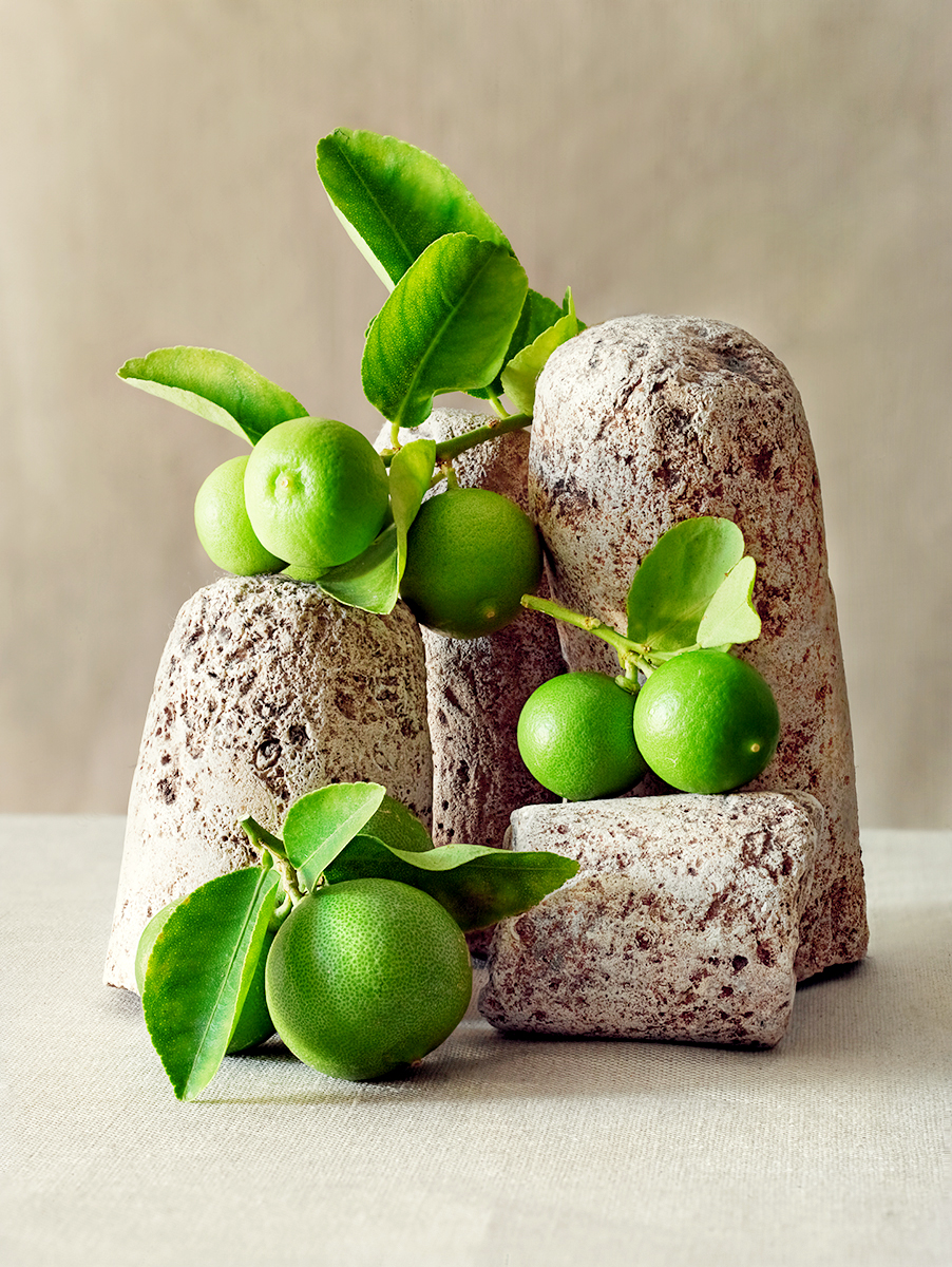 Limes and rocks.jpg