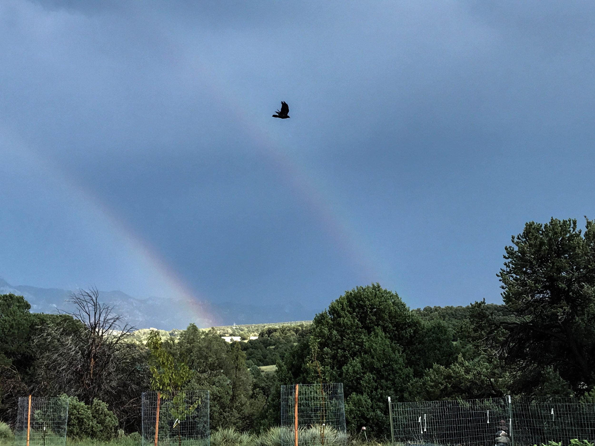 Double Rainbow over the Acres of Ireland.