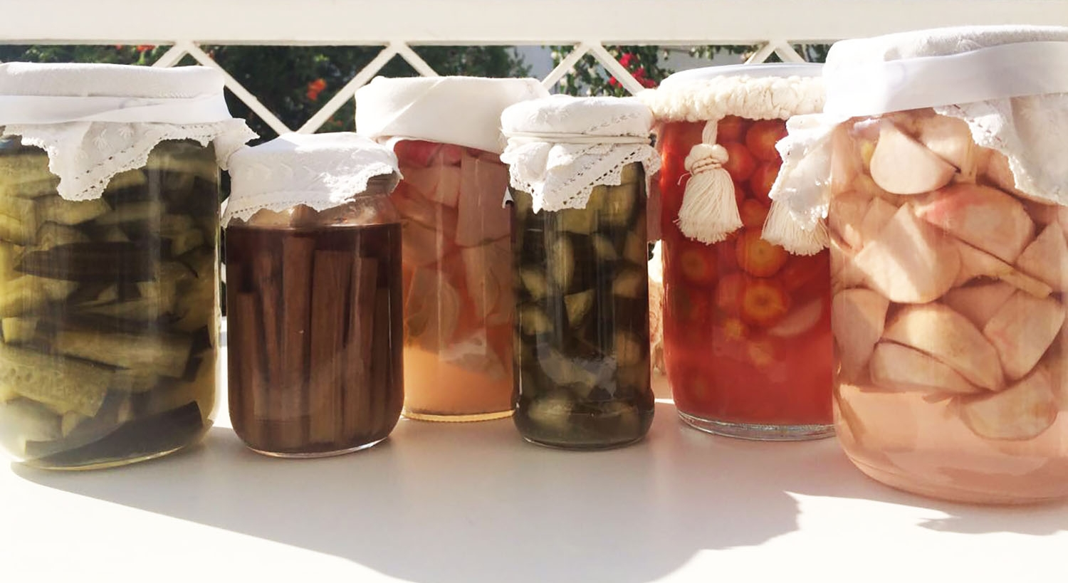 Homemade fermented organic veggies (cucumber, cardoon, fennel, zucchini, carrot, turnip)