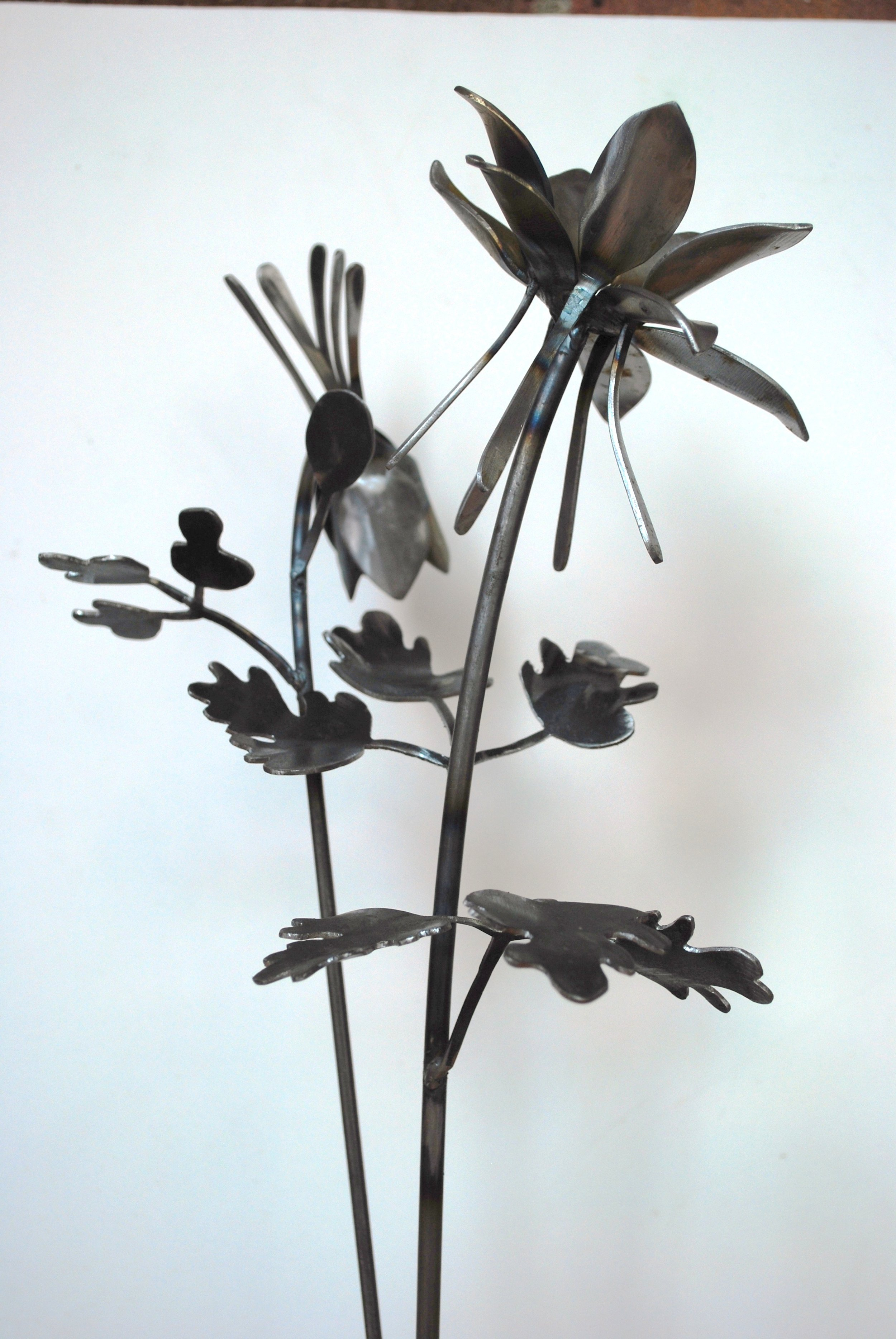 Iris at Art on a Whim Gallery (10).JPG