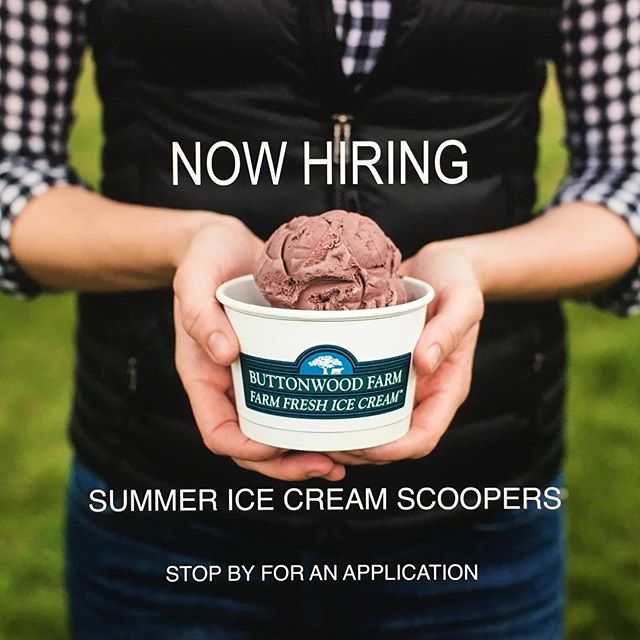 Home from college and looking for a summer job? We're looking for more ice cream scoopers to join our team #buttonwoodfarmicecream #icecream #summer