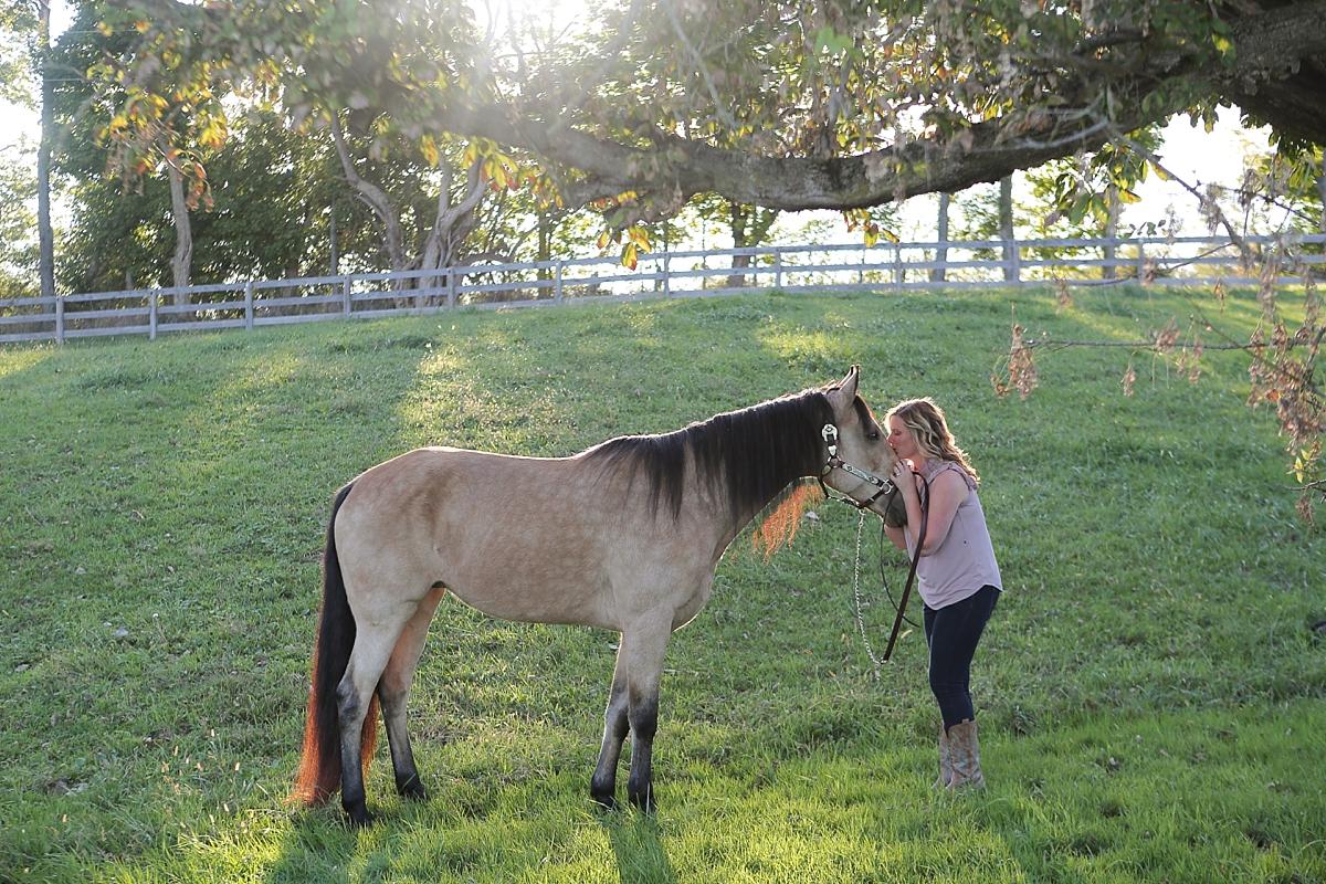 amandabeal-cimarron-horse_0003.jpg