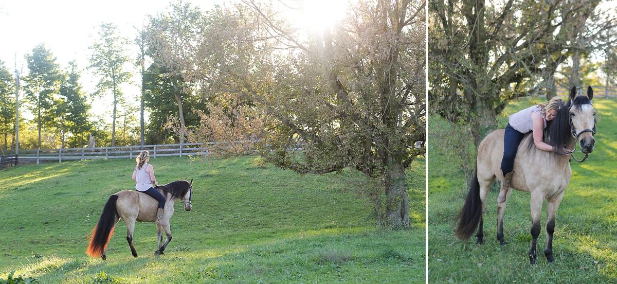 amandabeal-cimarron-horse_0005.jpg