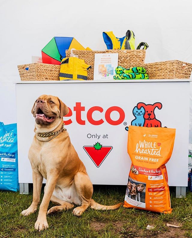 We had so much fun at @Woodstock today with our friends @canadiantire! You can learn more and shop WholeHearted at any of your Canadian Tire stores!  #repost @curiocitytoronto @petco #ctlovespets #wholeheartedpets
