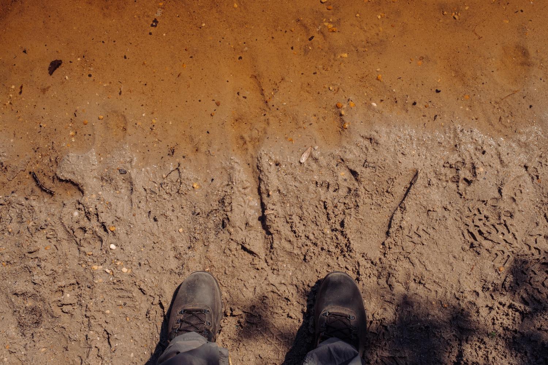 Wharton-State-Forest-Hiking-Mroczek-2837.jpg