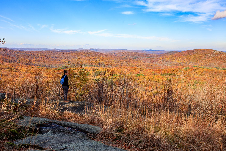 Wyanokie-Hiking-Mroczek-2015-15.jpg