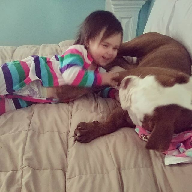 📸 1-3: A girl and her dog.  4: Happy diaper time. *I can't believe I made it more than a year changing a diaper. I have no problems doing it and have changed plenty in my life but just goes to show you just how much I miss out on being two states away. And 5: PTFO watching Frozen. =)