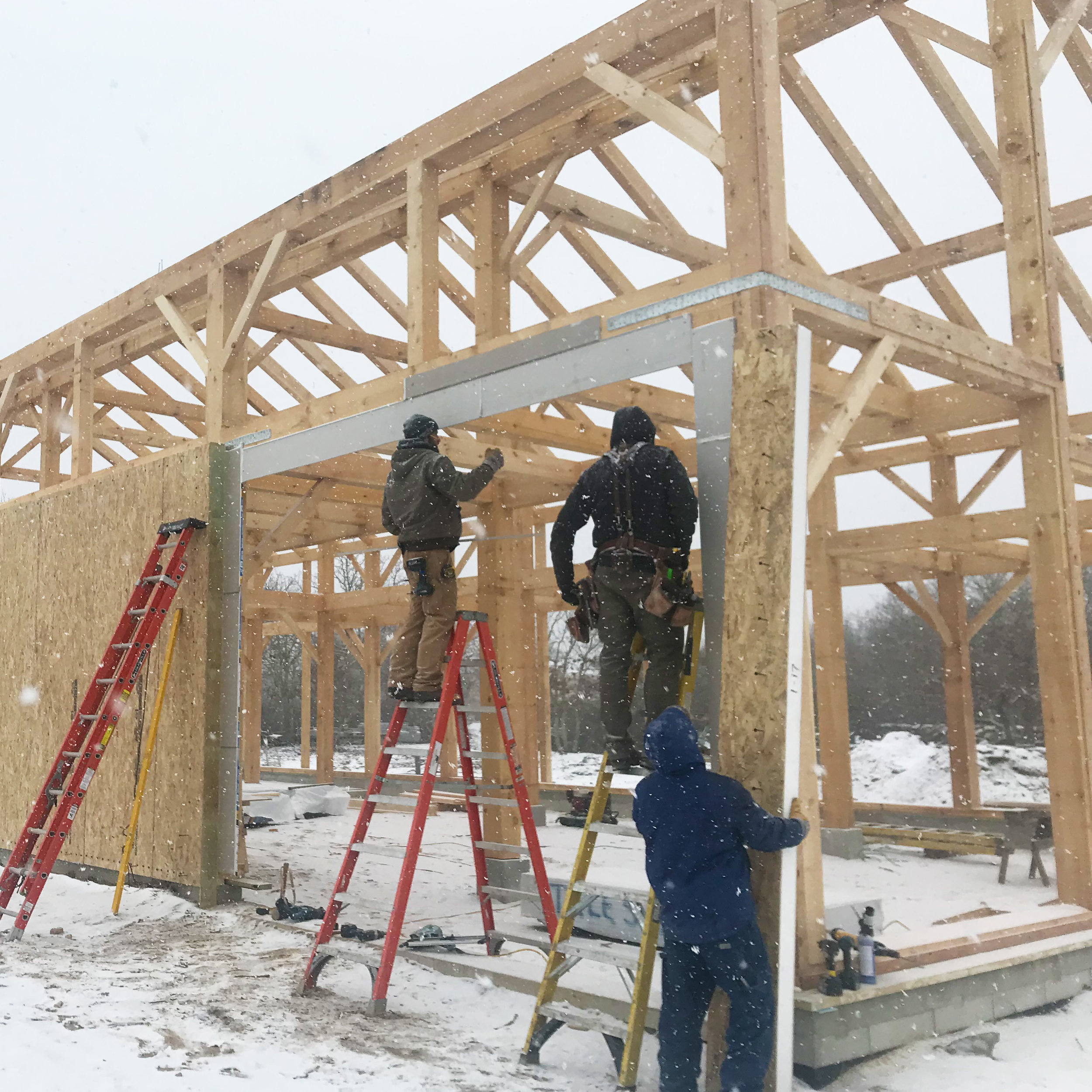 Timber frame panel installation.jpg