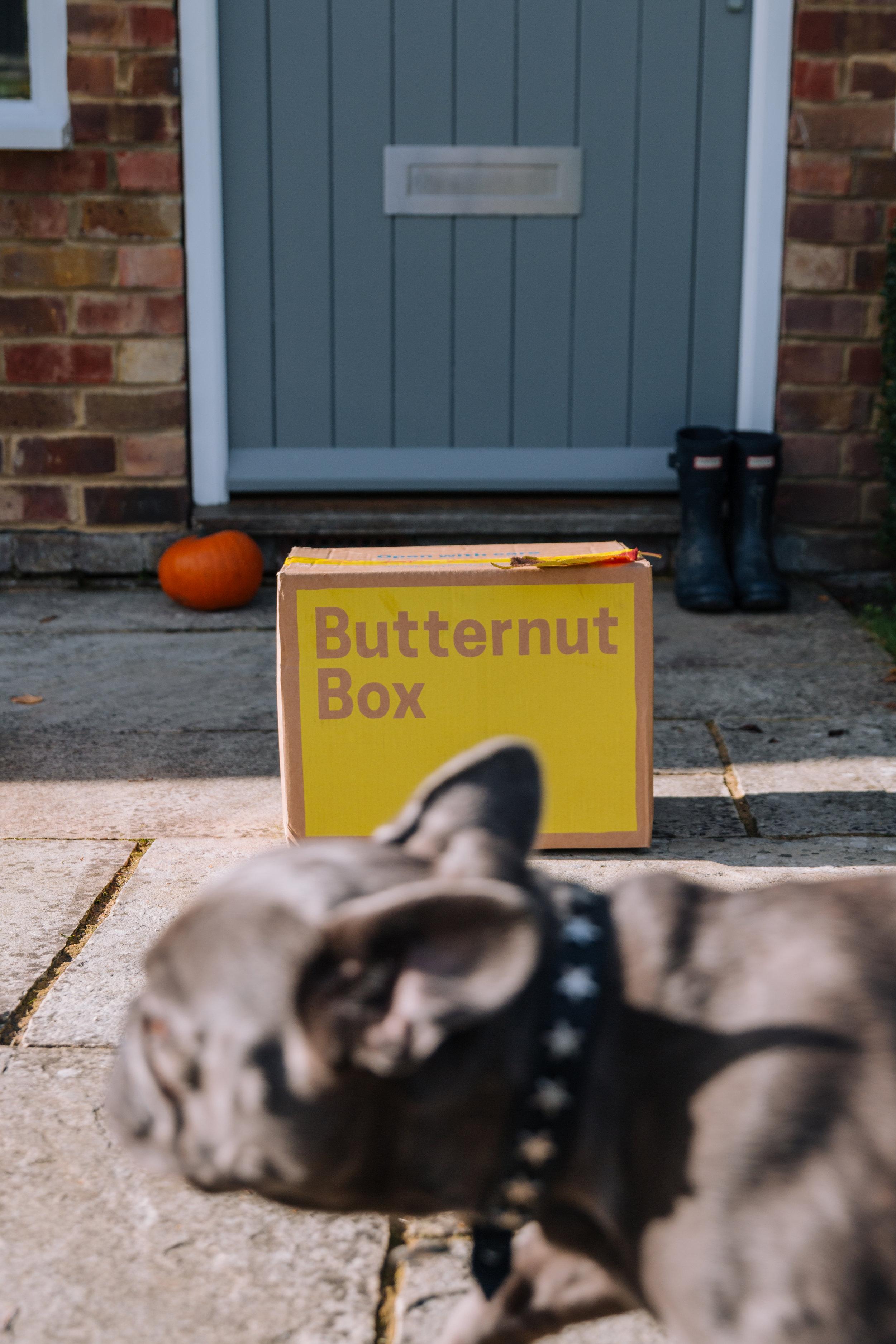 harley-butternut-box.jpg