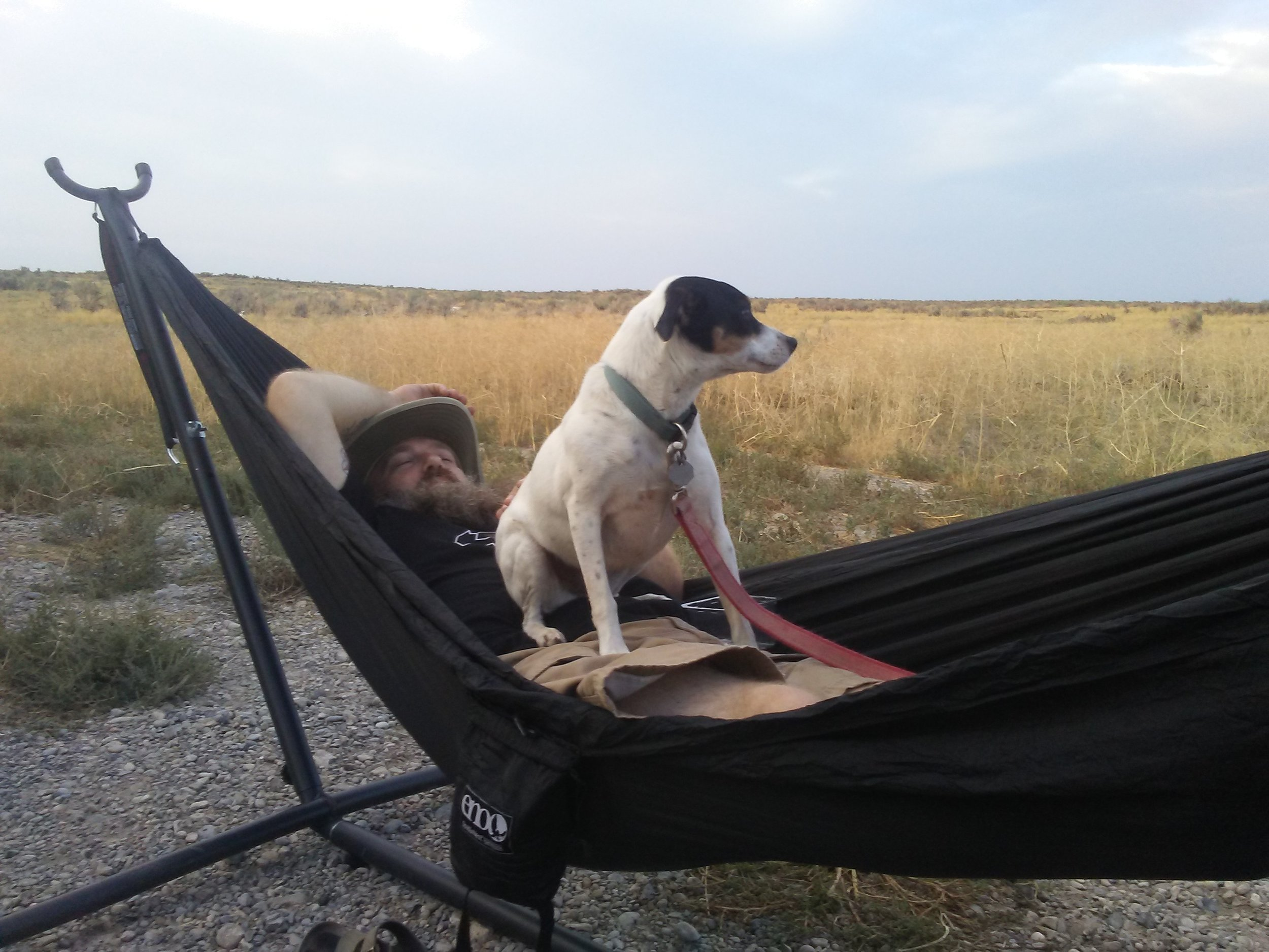Ollie standing guard while I chill in the hammock