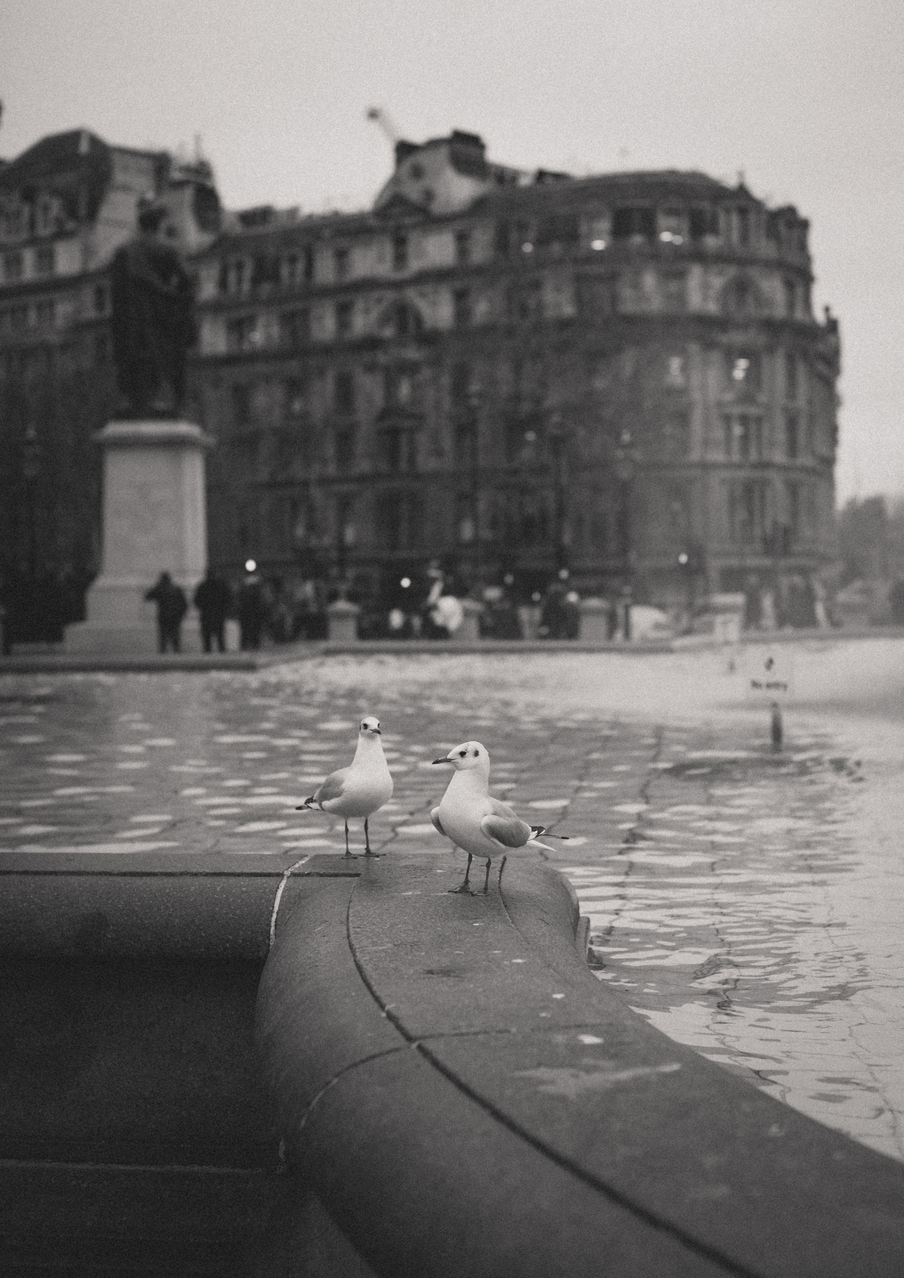LondonV-8.jpg