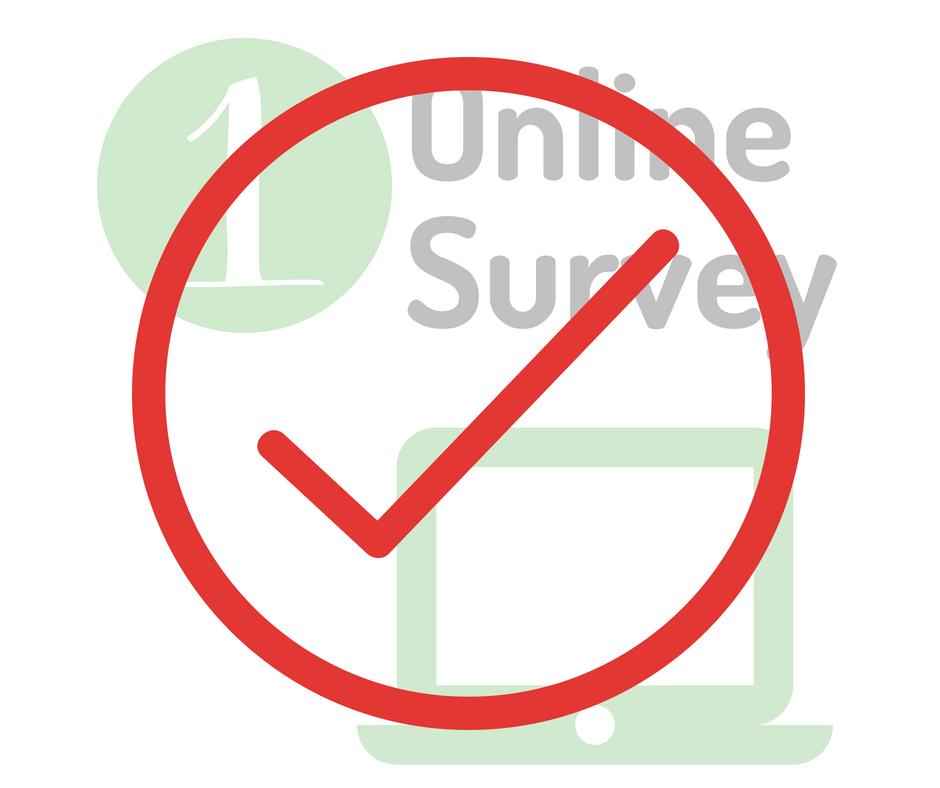 1online surveyDONE.png