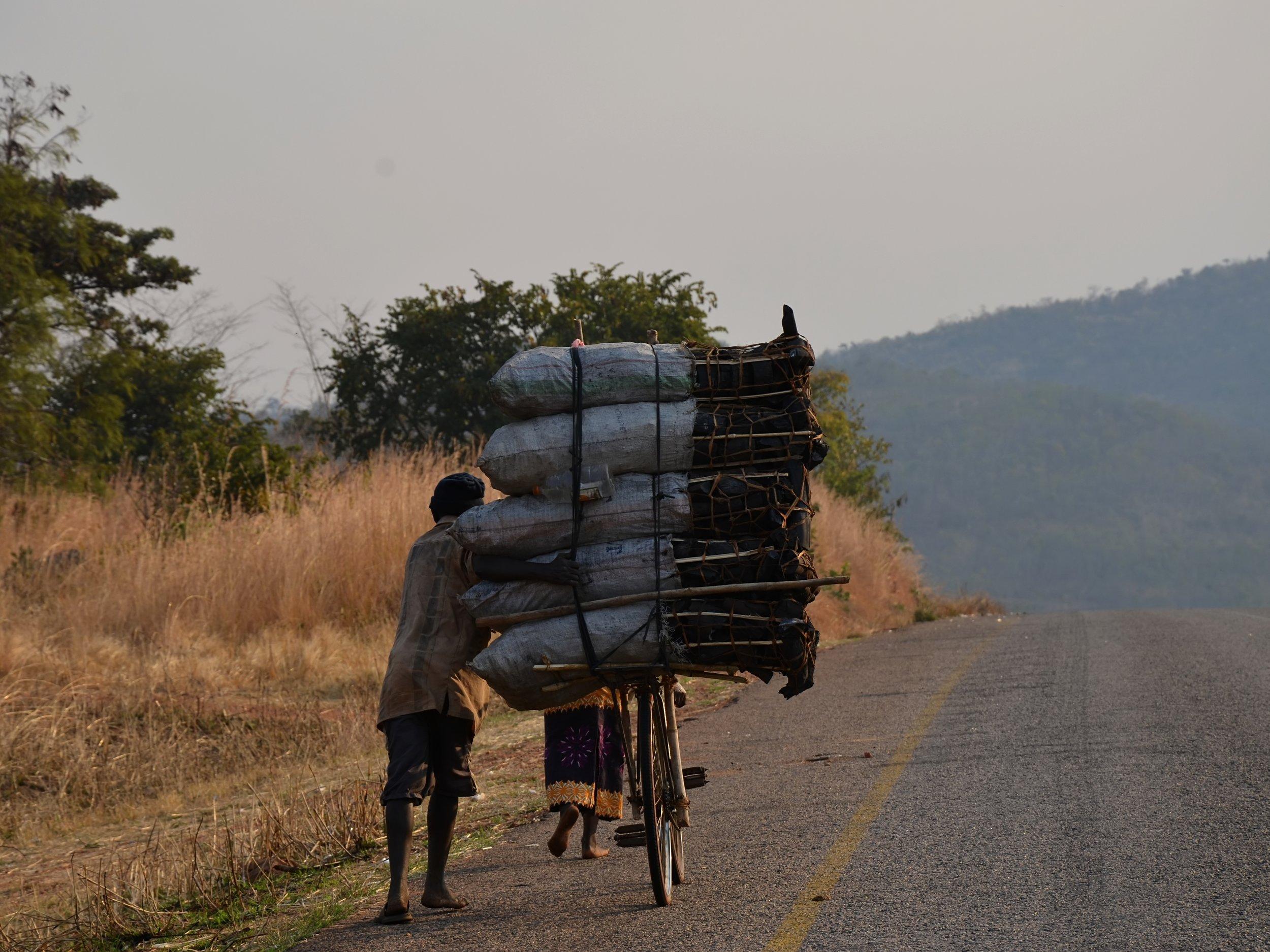 Charcoal on Lundazi Road, eastern Zambia Photo credit: Hans Hillewaert, Flickr.  Link .