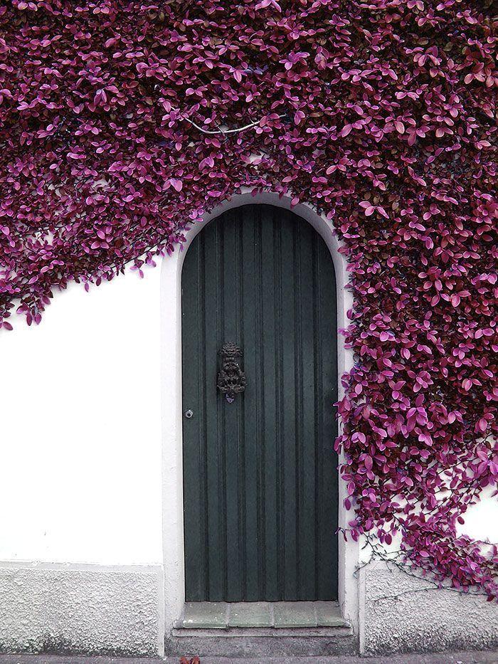 what-colors-to-paint-my-front-door 8.jpg