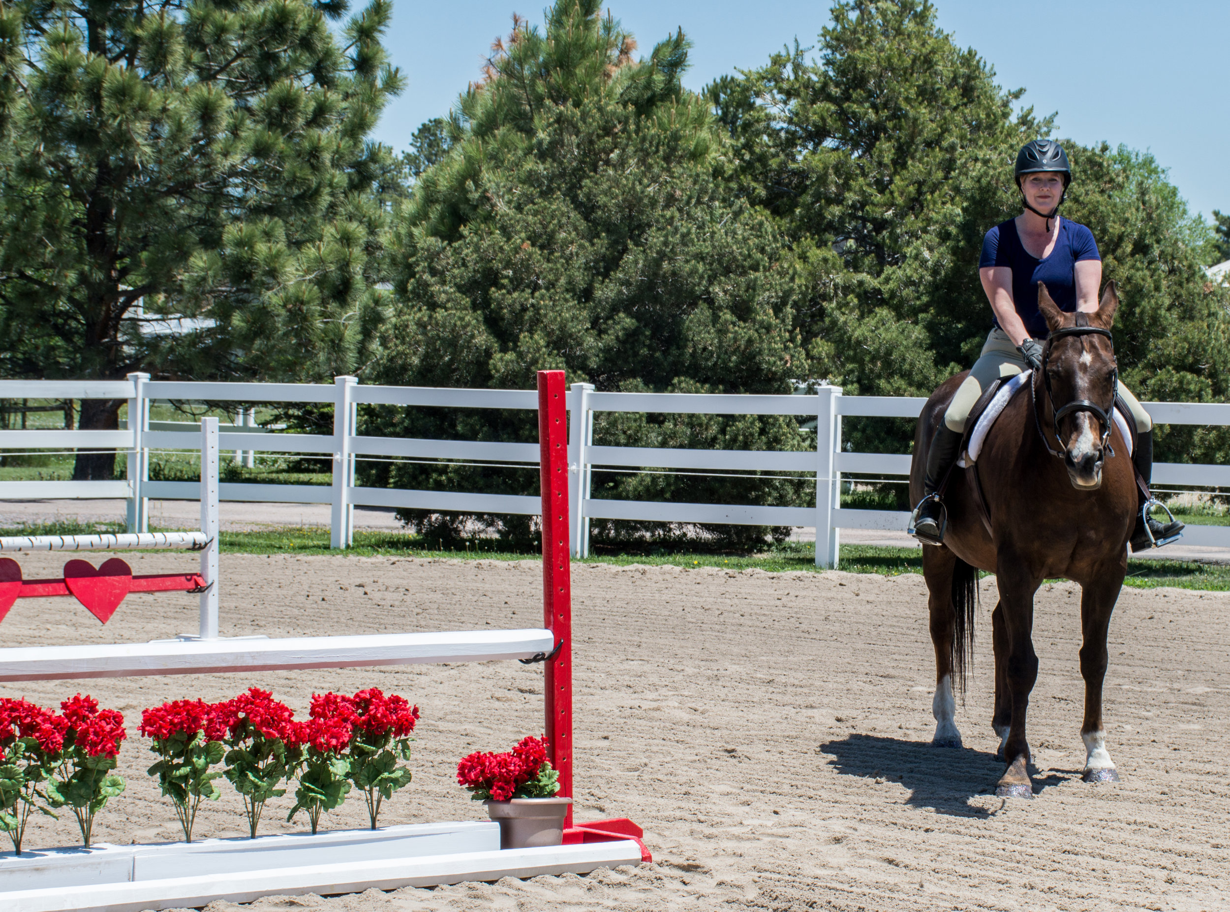 How To Stage An Equestrian Property S6 Ep9.jpg