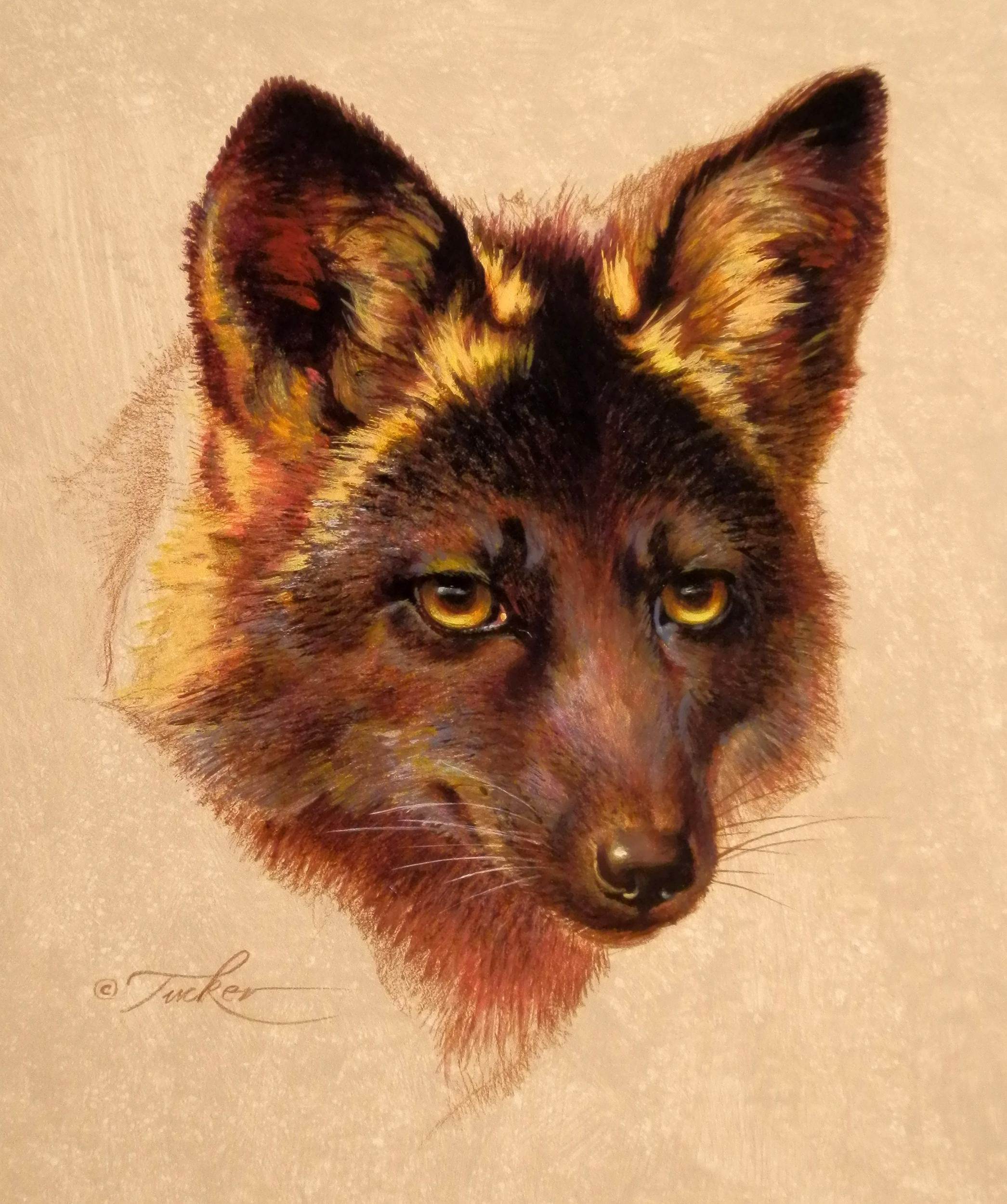 Black Fox72-2500.jpg