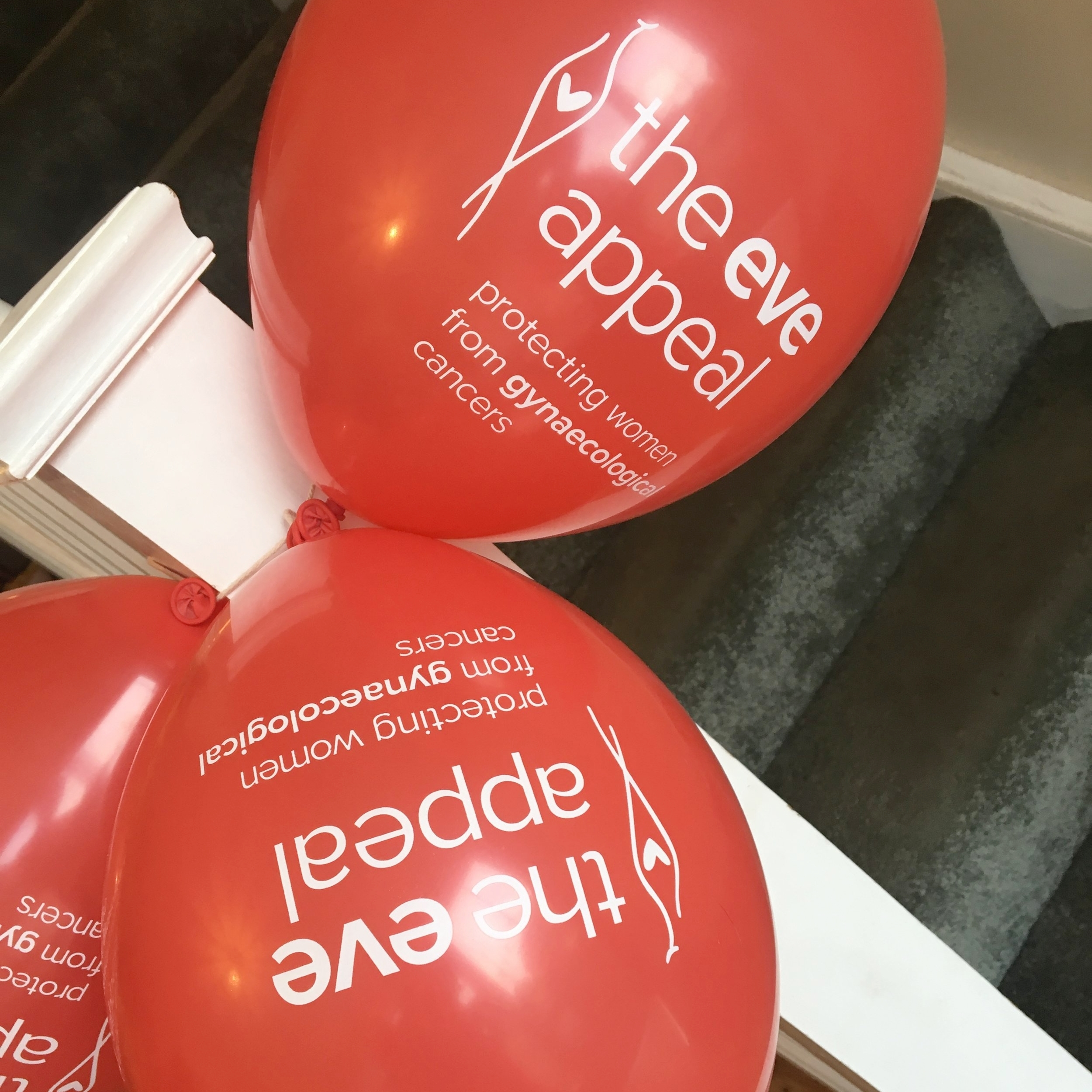 Eve Appeal balloons included in the fundraiser pack