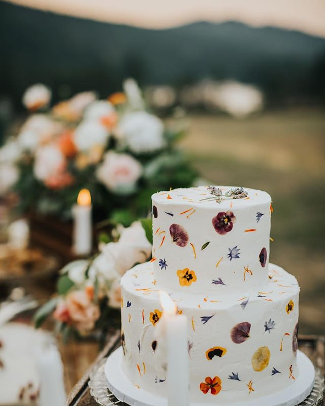 Cake makes me happy. I have a thing for cake. Especially cake covered in pressed organic and edible flowers 🌸🎂🌸 This little beauty from @marvellouscakes is covered in flowers from @dancing_dandelion_farms #ilovecake #iloveflowers #eatmycaketoo #sunsetview #birdseyecovefarm #birdseyecovefarmwedding #cowichanvalleyweddings #cowichanvalleyphotographer