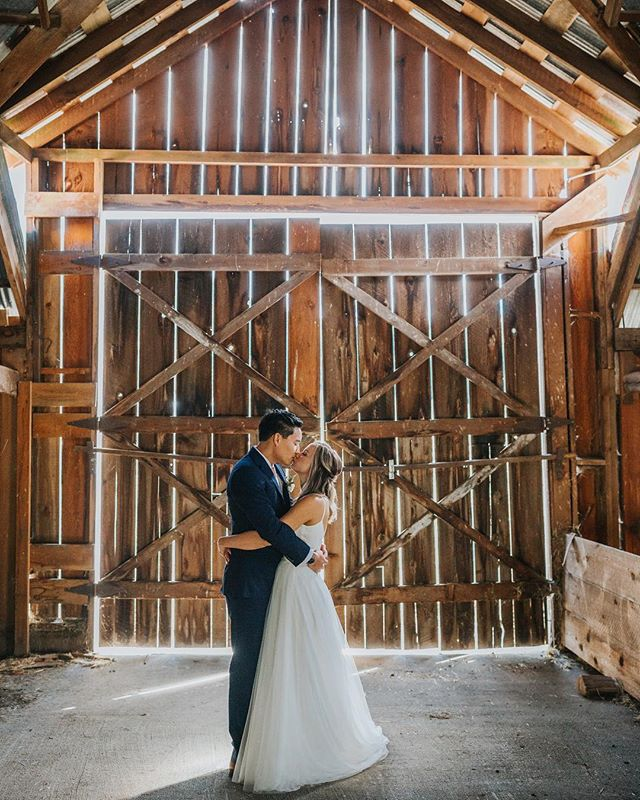 I have such a soft spot for old barn light ✨One of my first high school photoshoots happened in our old barn on the farm I grew up on. I just did the math on how long ago that was 😳 #barnlight #birdseyecovefarm #birdseyecovefarmwedding #cowichanvalley #cowichanvalleyphotographer #pnwedding #junebugweddings #vancouverislandwedding #realcouplesofbc