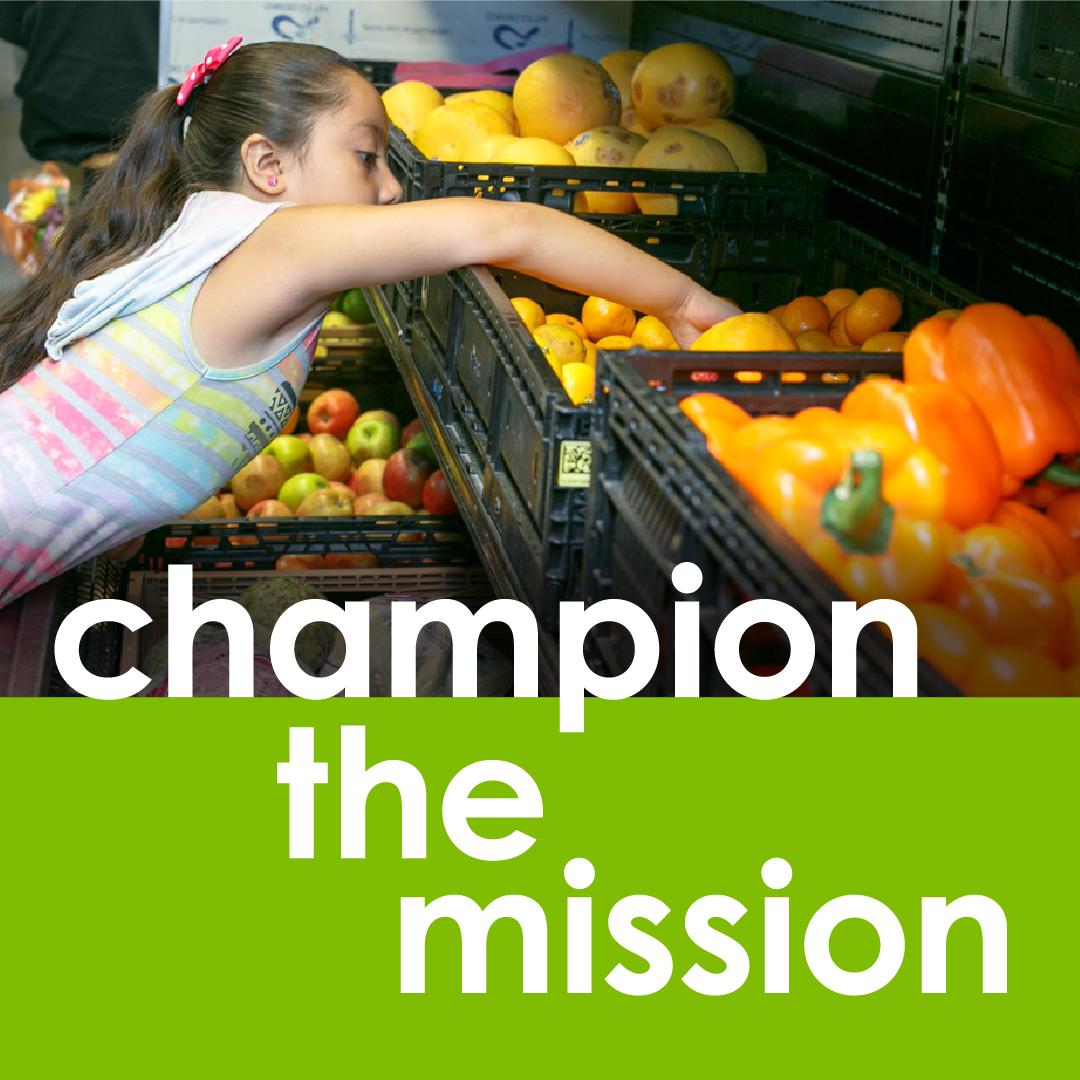 champion-the-mission-100.jpg