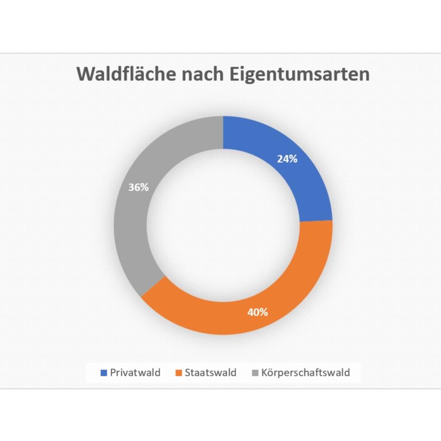 Wirtschaftsfaktor+Wald.jpg
