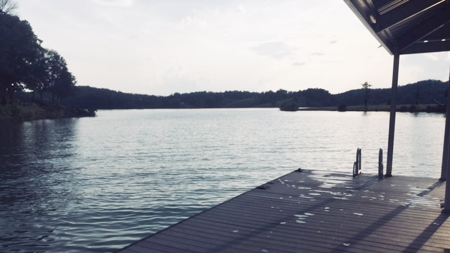 Douglas Lake, East Tennessee.  Photo:  Anna Caro.