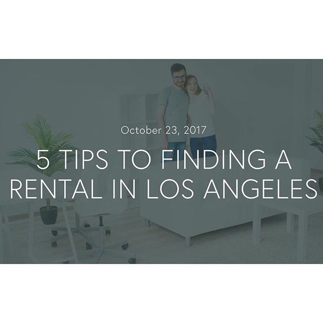 """Check out our new blog post! """"5 Tips to Finding a Rental in Los Angeles""""  ______ LINK IN PROFILE ______ #justleased #leasing #lease #forrent #rent #rental #realestate #realestateblog #realestateagent #realestateinvestor #leasingLA #househunting #losangeles #losangelesrental #realtorlife #sellingLA #justsold #blog #realtor #weheartdesign #losangelesrealestate #findahome #apartment #apartmenttherapy #design"""