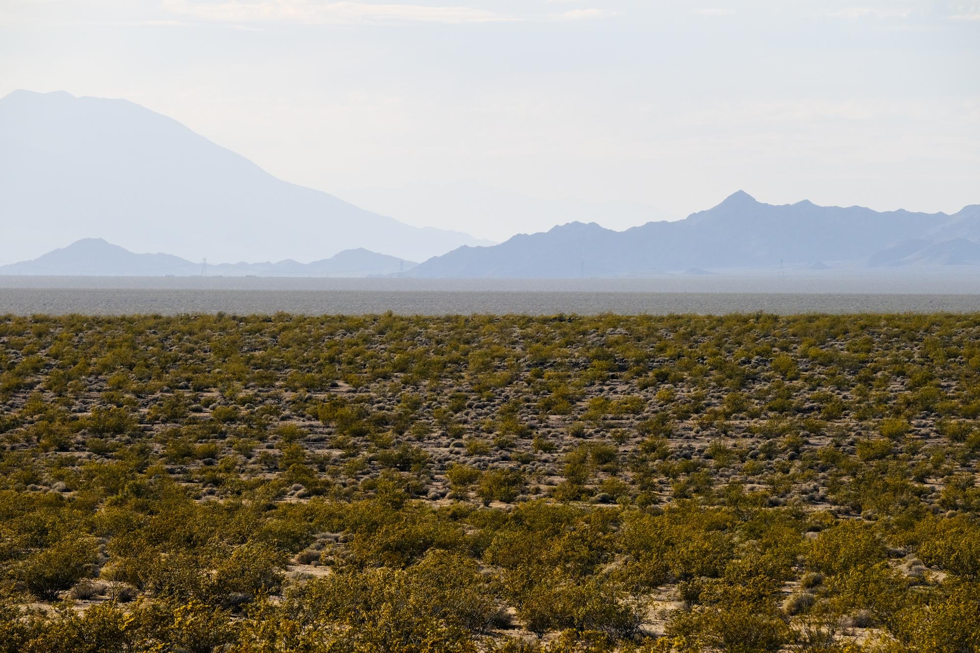 Mojave-1.jpg