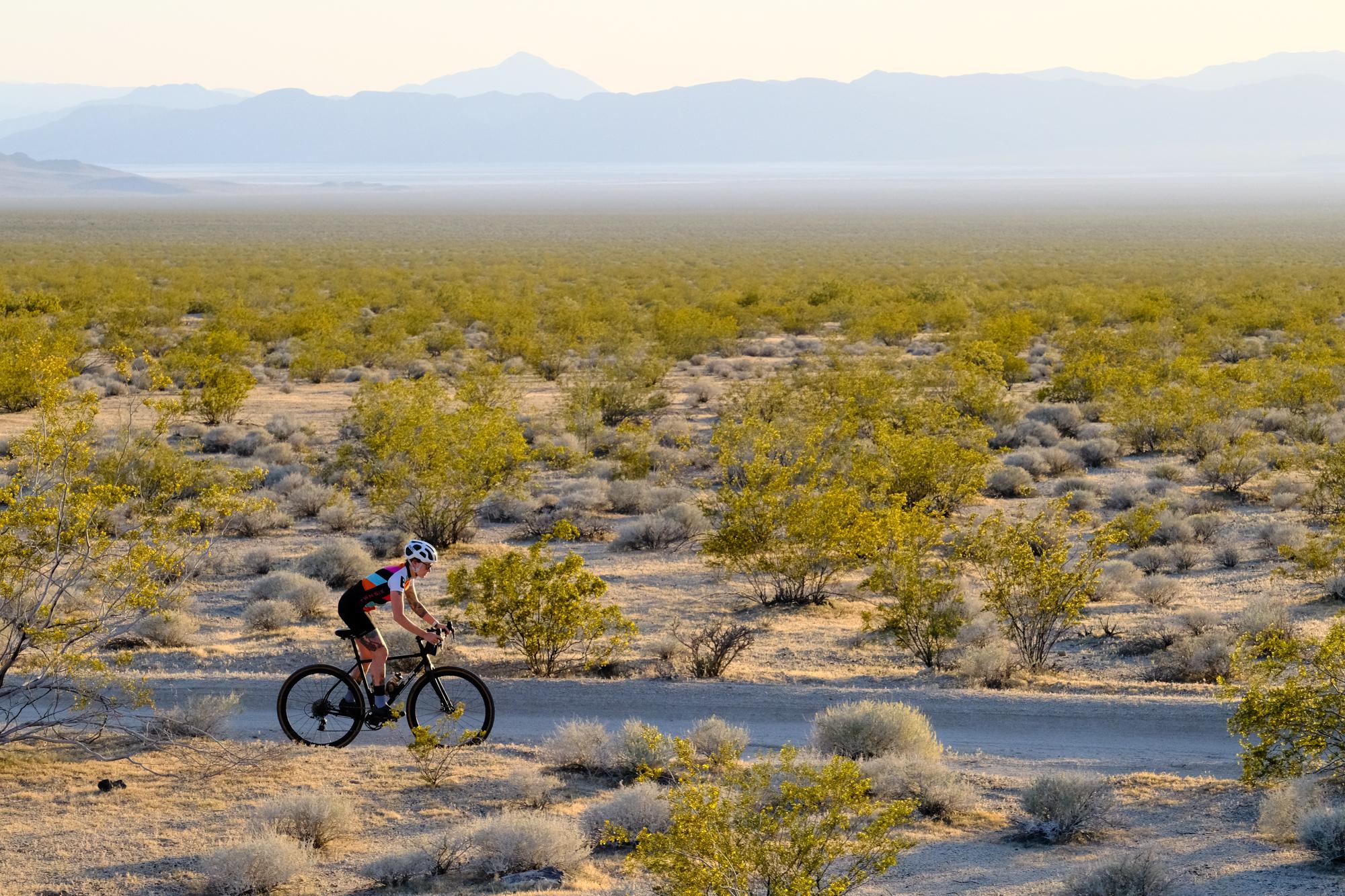 Mojave-9.jpg