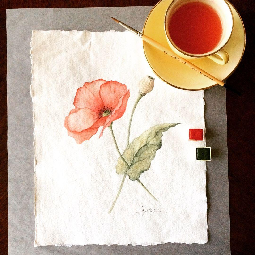 Poppy Composition, Watercolor on Handmade Paper, 8.5x11, ConstanceReeder.Com