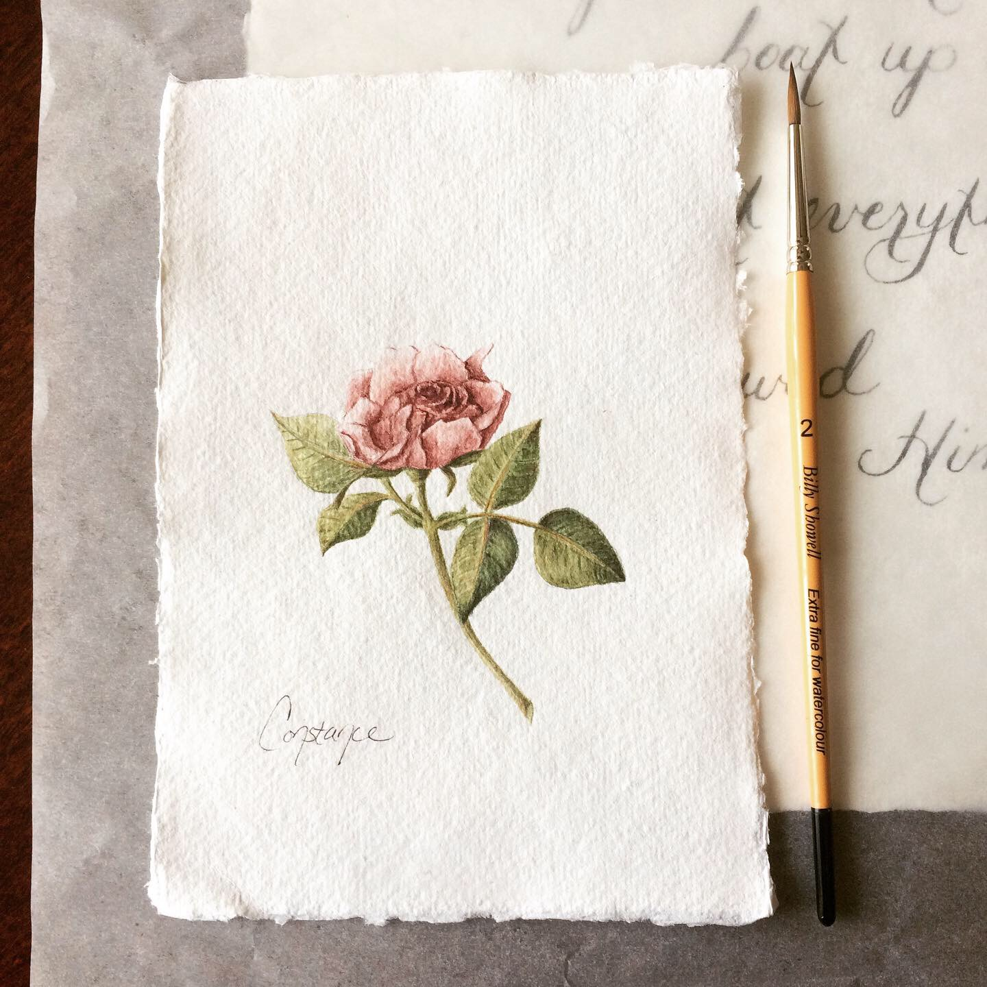 Lovely Fairy Miniature Rose Composition, Watercolor on Handmade Paper, 5x7, ConstanceReeder.Com
