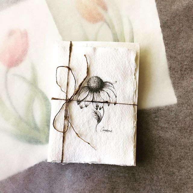 Inky Coneflower Greeting Card