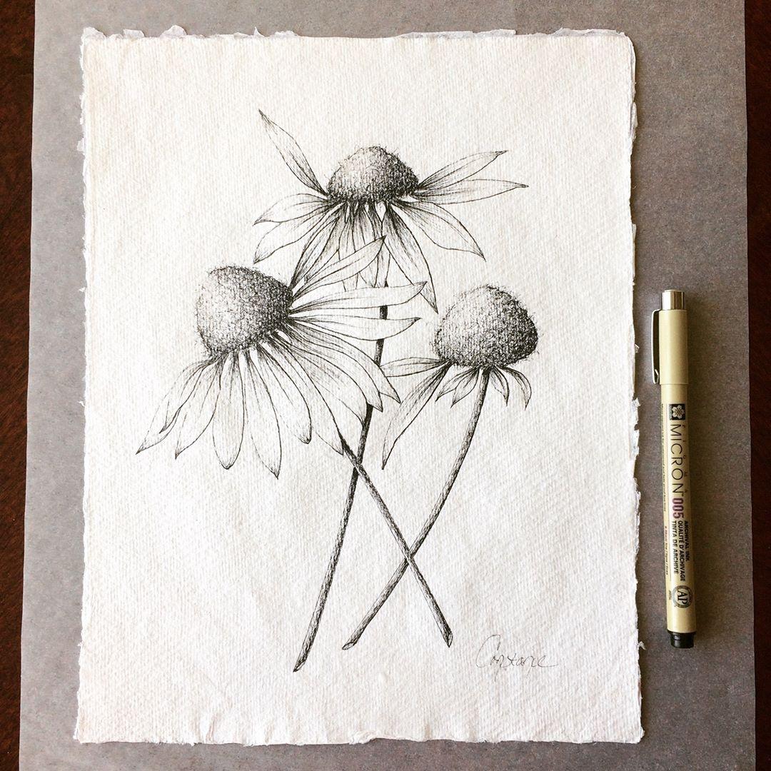 Inky Coneflowers on Handmade Paper, 8.5x11, ConstanceReeder.Com