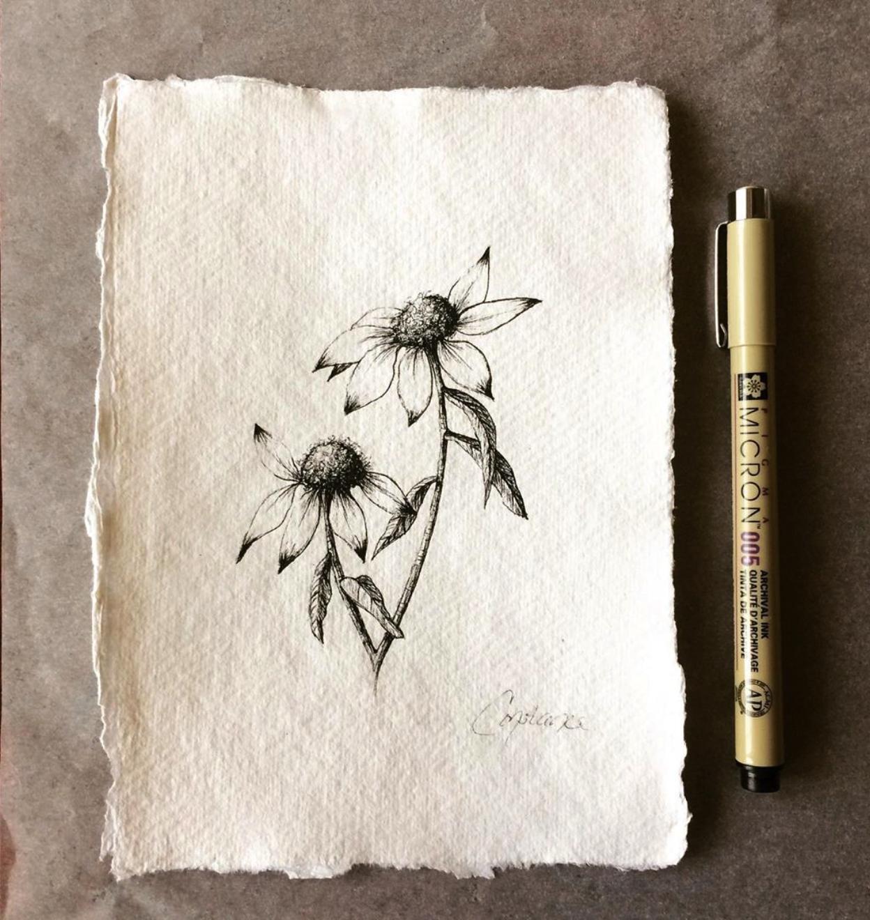 Two Inky Coneflowers Facing Left on Handmade Paper, 5x7, ConstanceReeder.Com