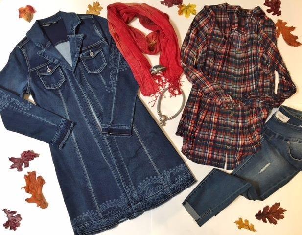 savvy jean coat and plaid shirt IMG_7160.JPG
