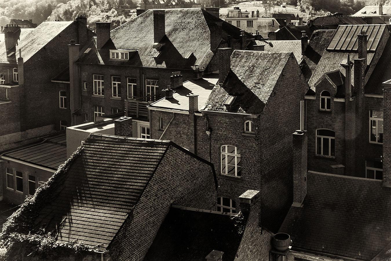 Houses of Dinant, Belgium, Autumn 2012.