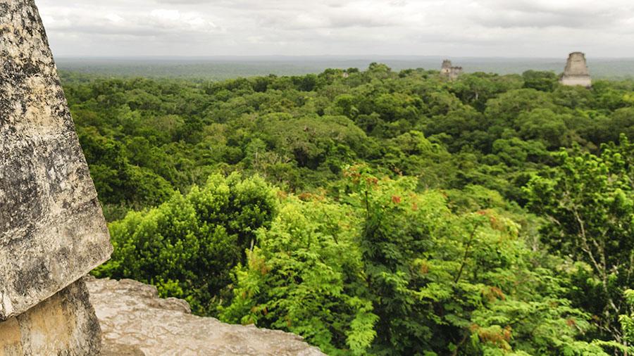 Tikal, Guatemala, 2011