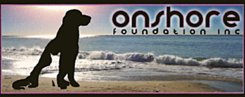 On Shore Foundation.png