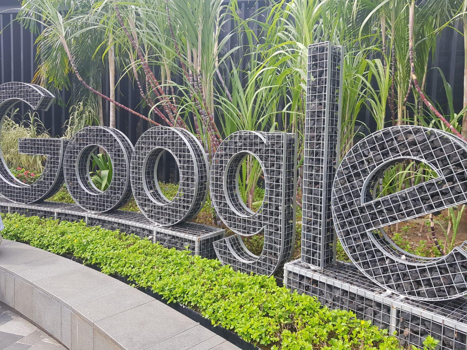 Blossom Seeds - Google
